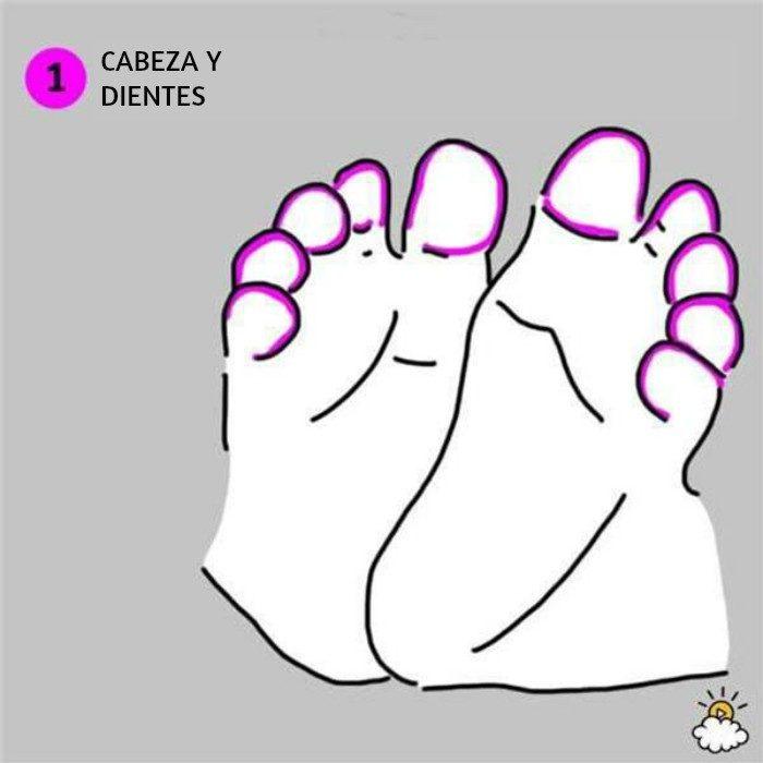 ilustración cabeza y pies reflexiología de pies para salud de tu bebé