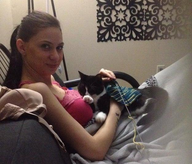 Gato que cuida a su dueña embarazada
