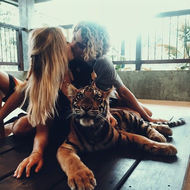 Jay Alvarrez y Alexis Ren Pareja de novios que viajan al rededor del mundo acariciando un tigre