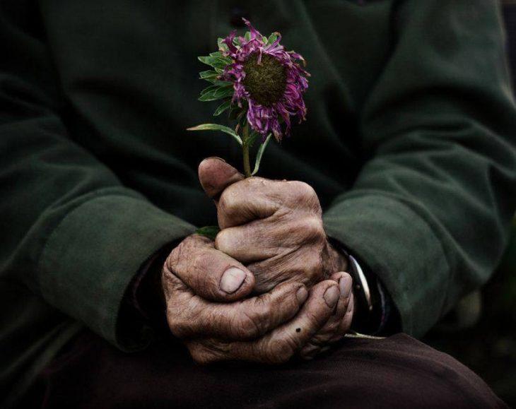 manos de abuelo con una flor en la mano