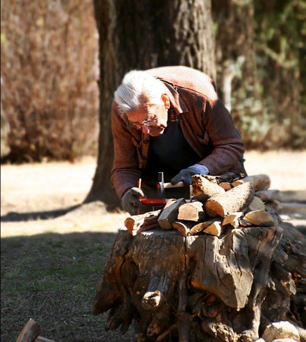 abuelo haciendo carpintería en el bosque