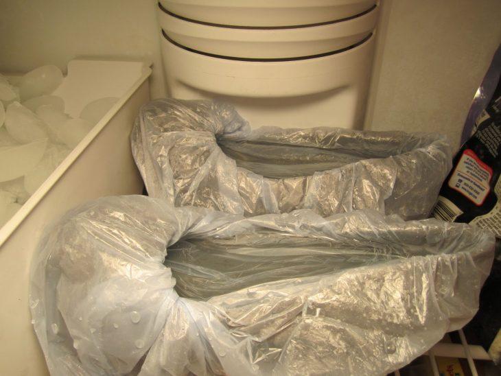 zapatos en bolsa en el congelador