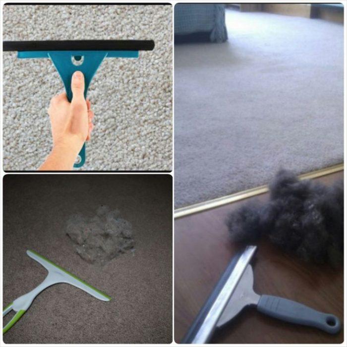 Limpia ventanas para quitar pelos de alfombra