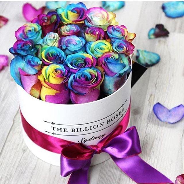 rosas de colores en caja