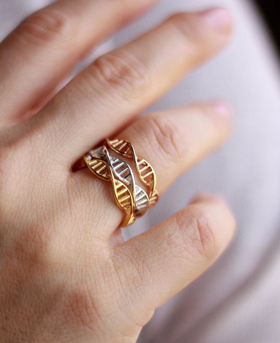 anillo adn