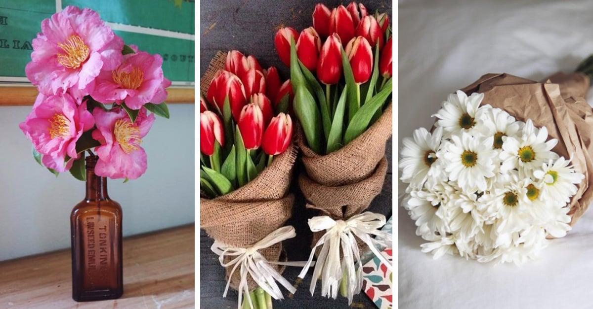 Tipos de flores, además de las rosas, que las mujeres deseamos recibir algún día