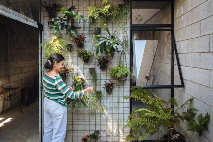 mujer regando sus plantas Casa de trabajadora domestica gana premio de arquitectura al edificio del año