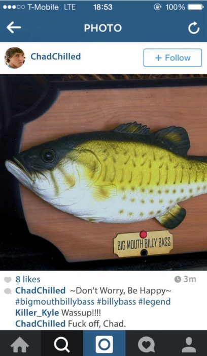 fotografìa en instagram pez de la pared que canta