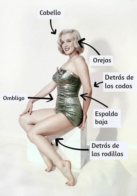 mujer marilyn monroe sentada ilustracion