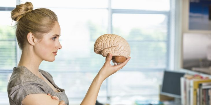 mujer sosteniendo un cerebro de plástico