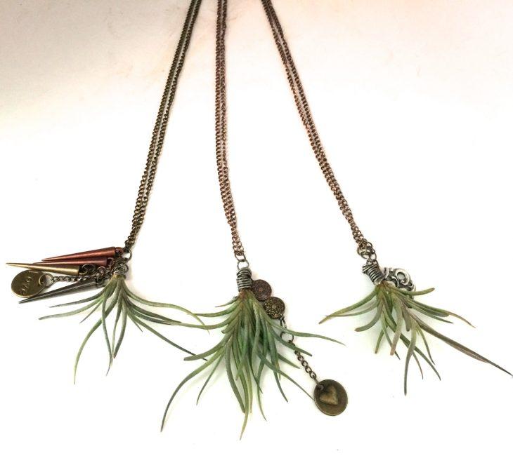 collar con plantas naturales