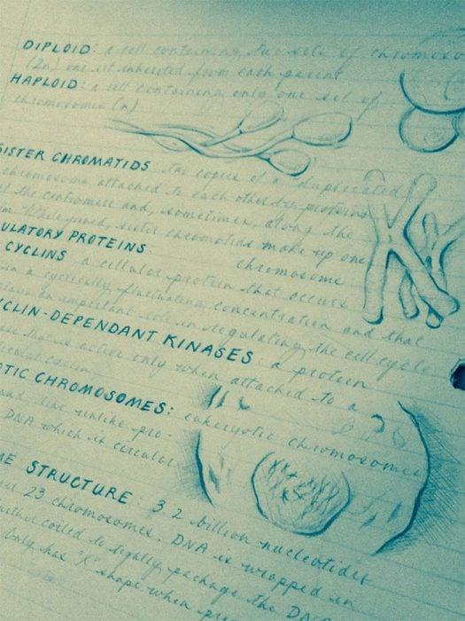 Apuntes y dibujos hechos a mano