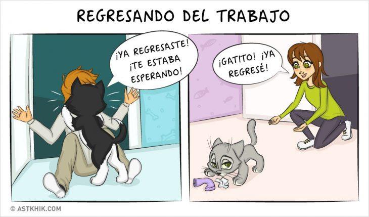 Comic que muestra las diferencias de vivir con un perro y con un gato cuando regresas del trabajo