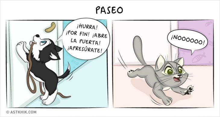Comic que muestra las diferencias de vivir con un perro y con un gato cuando los sacas a pasear