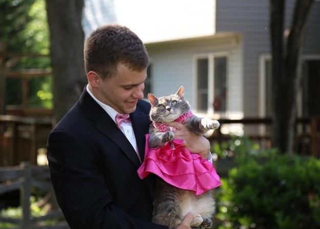 Chico sosteniendo a un gato que trae puesto un vestido en color rosa