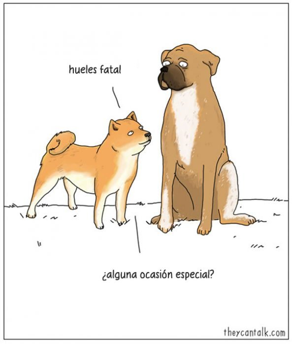 Ilustración donde dos perros están hablando