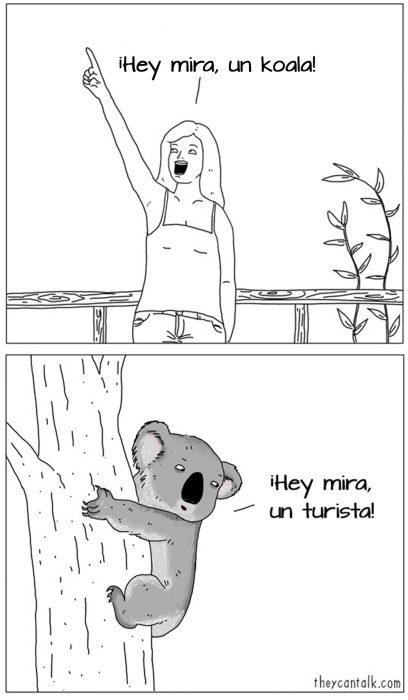 Ilustración de un koala mirando a una turista
