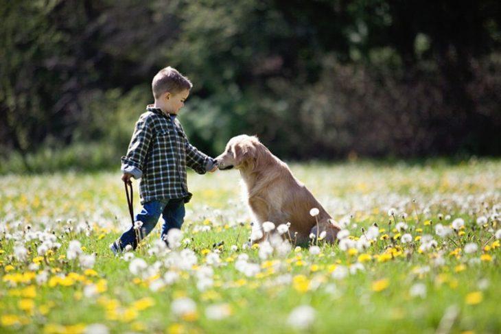 niño acariciando a un perrito en un jardín