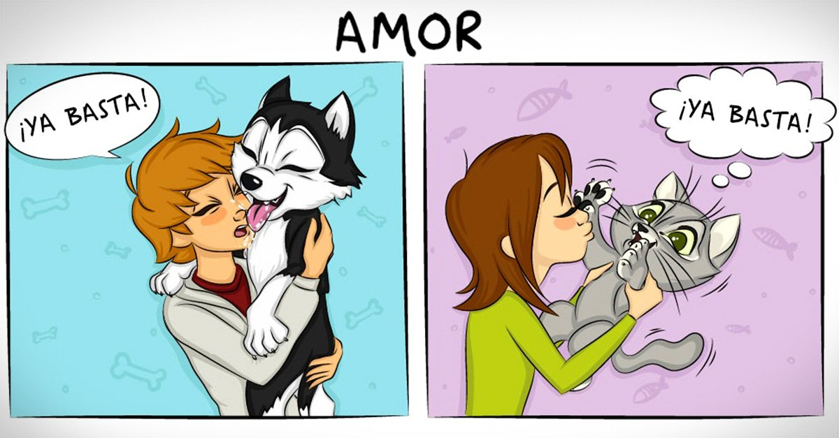 Cómics acerca de las diferencias entre vivir con un perro y vivir con un gato
