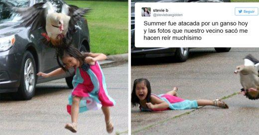 Fotos de pequeña atacada por ganso se vuelven virales