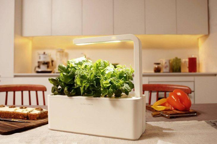 maquina para mantener vivas las hierbas para cocinar