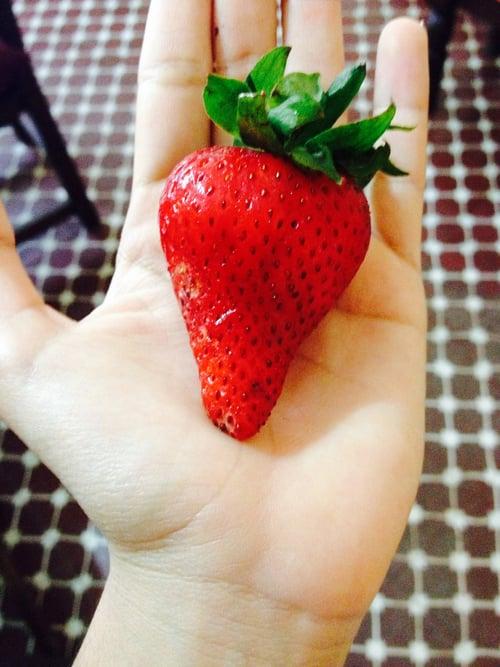 Mano sosteniendo una fresa gigante