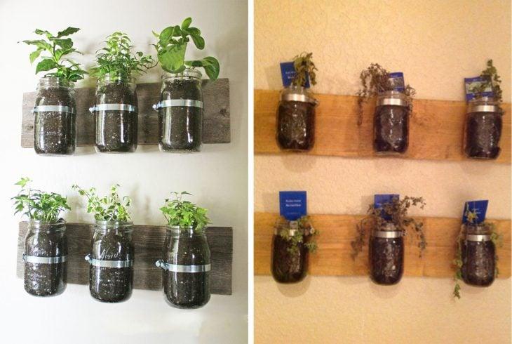 Fails de pinterest con plantas en vasos de mason jarr