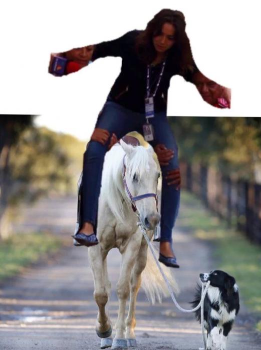 #Ladyreportera en un caballo