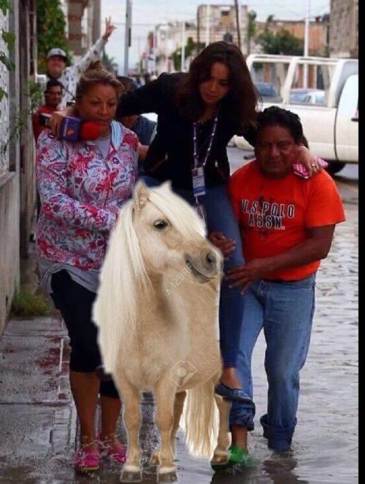 Ladyreportera en un caballo