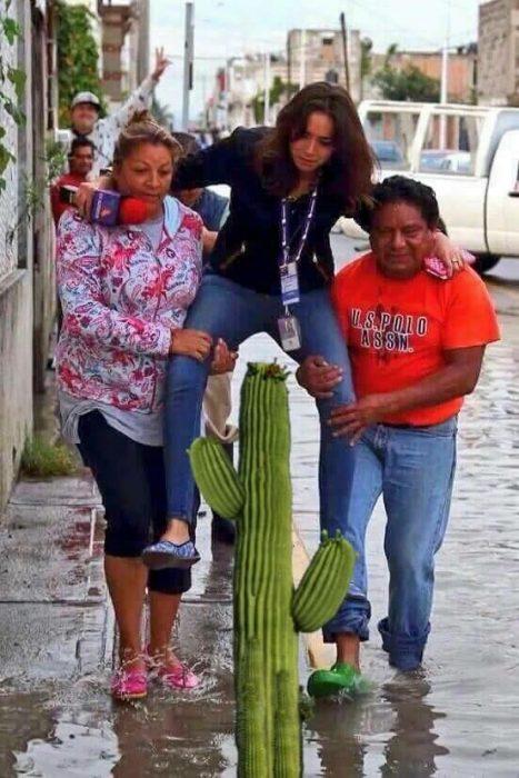 #LadyReportera en un cactus