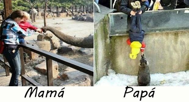 Niños de visita en el zoológico