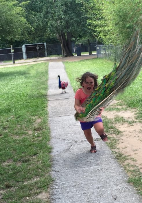 niña corriendo con plumas de pavo real en la mano
