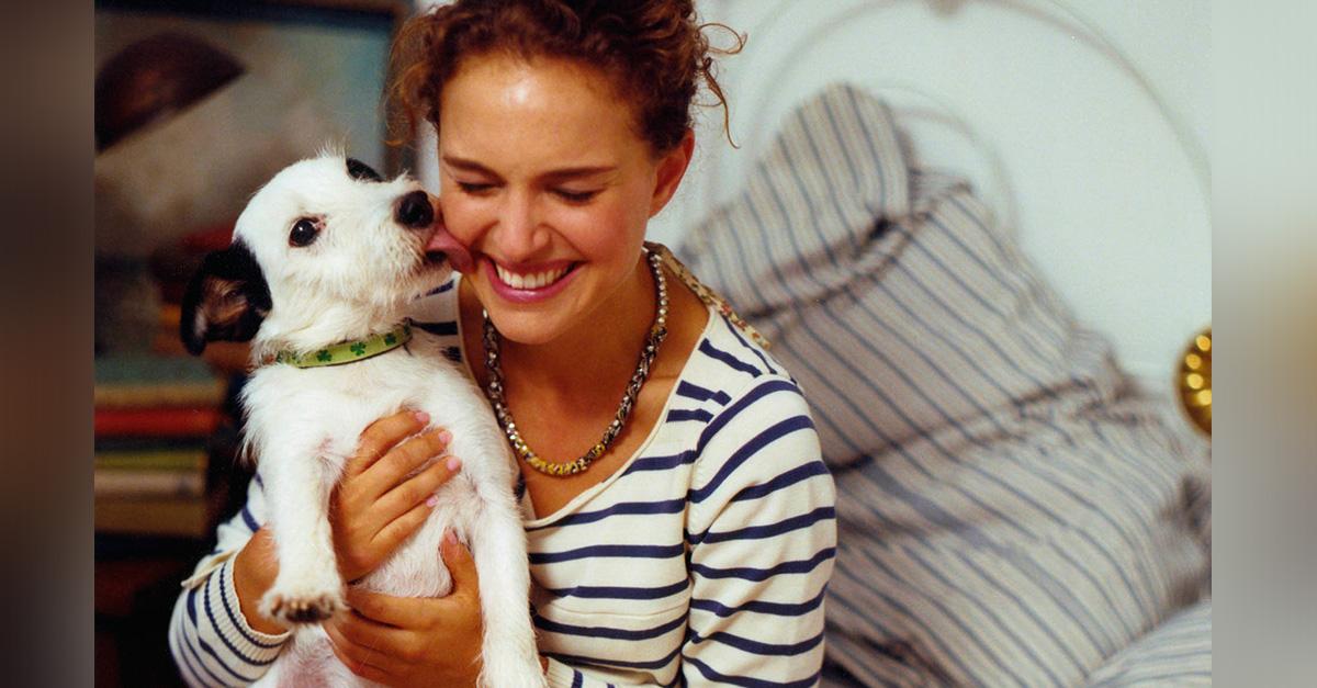10 mensajes ocultos detrás del comportamiento de tu perro que probablemente no habías notado