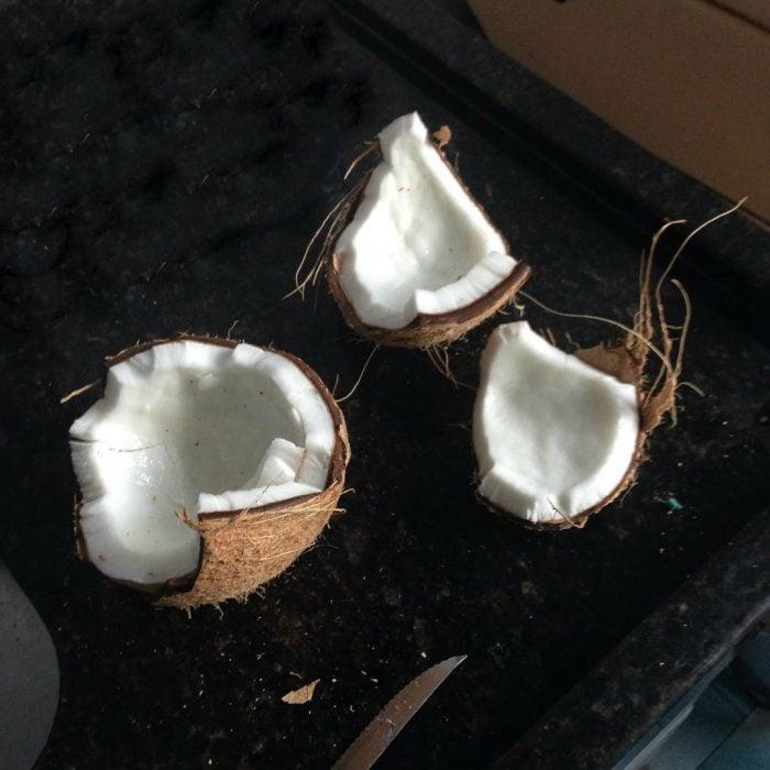 un coco abierto en una mesa