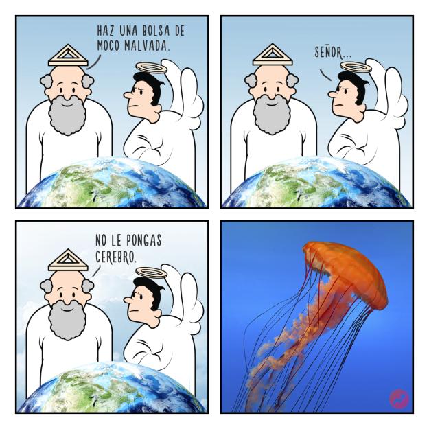 Cómics Dios creó a las medusas