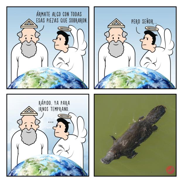 Cómics creación de Dios