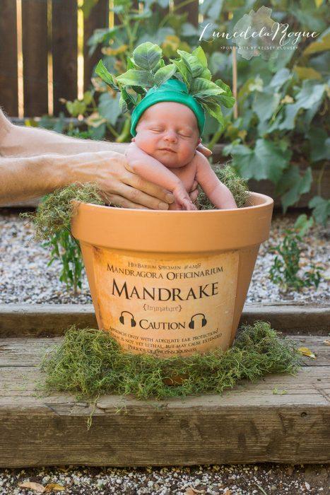 recién nacido disfrazado de Mandrágora