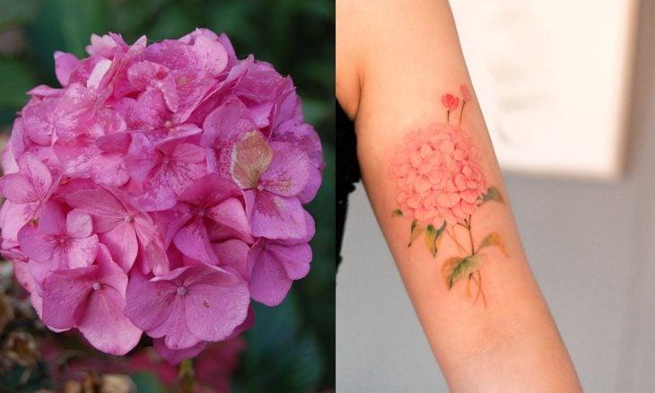 Hortensia y tatuaje de hortensia.