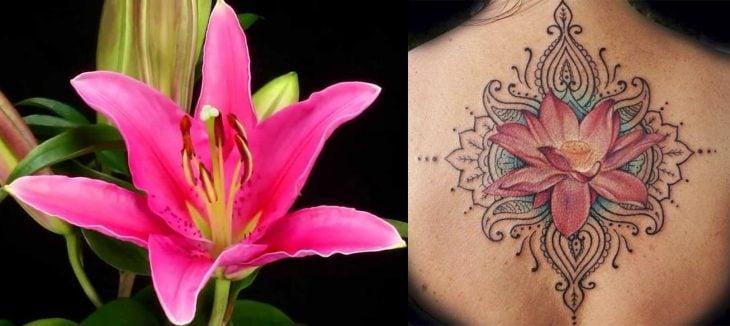 Lirio y tatuaje de lirio.