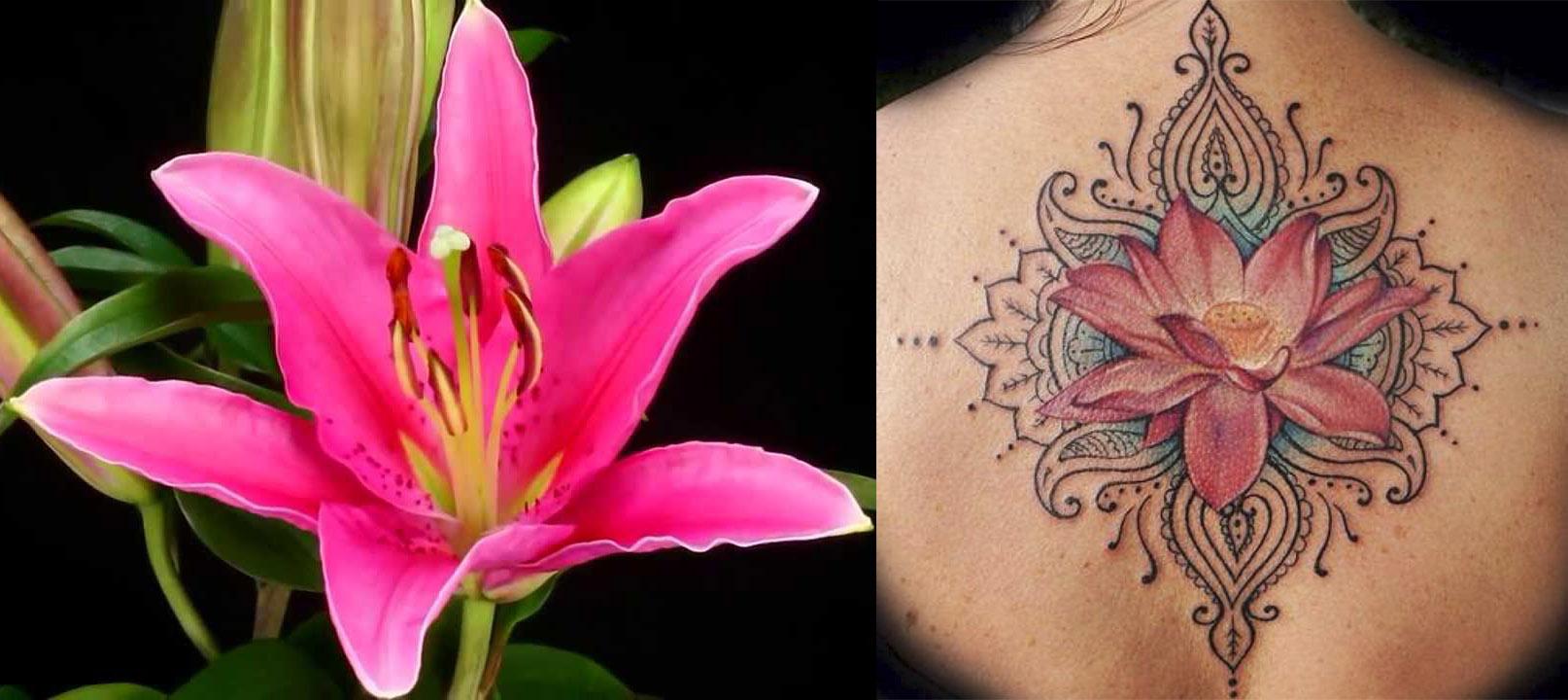 Qu flor deber as tatuarte seg n tu signo del zodiaco - Mejor signo del zodiaco ...