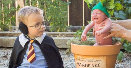 Una sesión de Harry Potter y una mandrágora llorona se hace viral