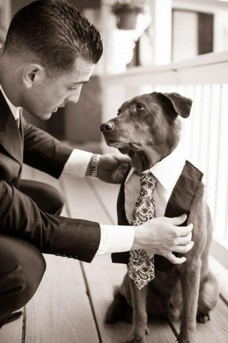 hombre agachado vistiendo a su perro con corbata