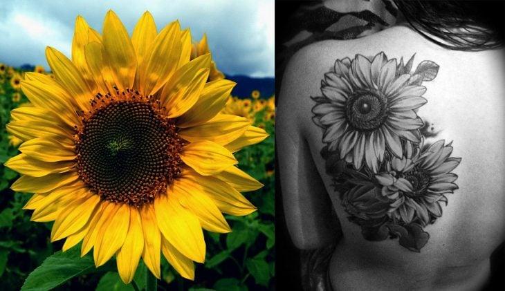 Girasol y tatuaje de girasol.