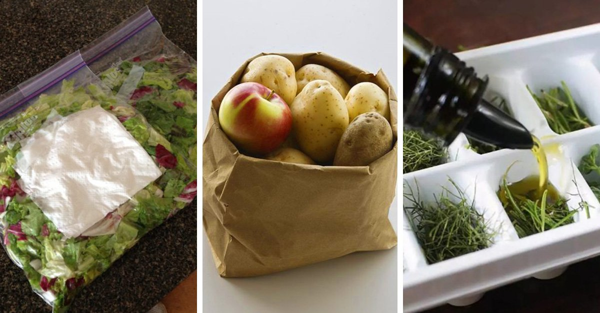 Consejos que te ayudarán a mantener tus alimentos frescos