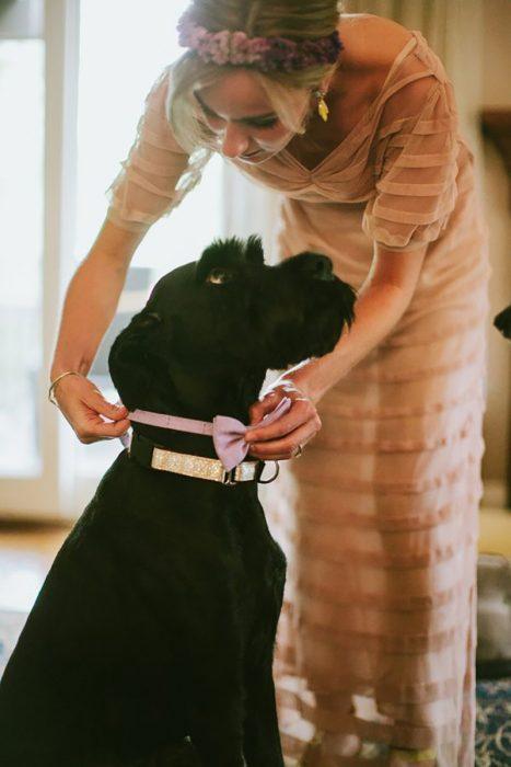 Cachorro negro con collar y moño rosa y novia en boda