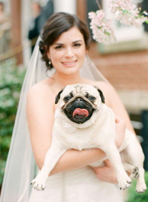 novia en vestido blanco cargando a perro pug