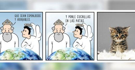 Divertidas ilustraciones que demuestran cómo fue que Dios creó a los animales
