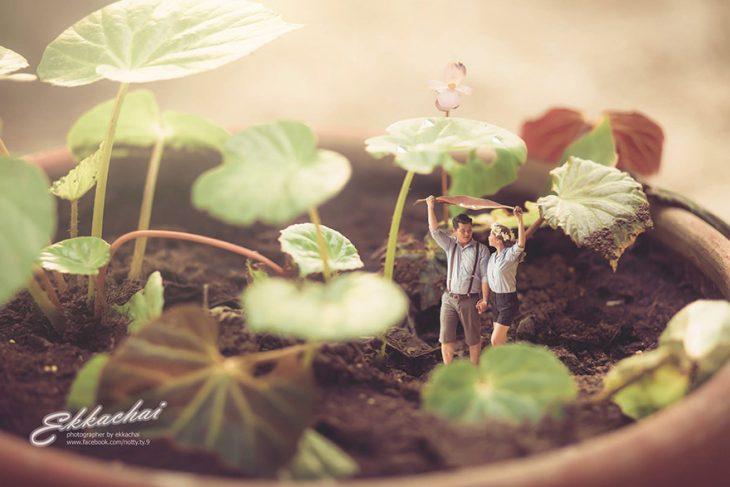 pareja en escenario miniatura bajo las plantas
