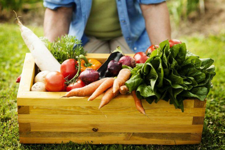 Vegetales cultivados de forma orgánica.