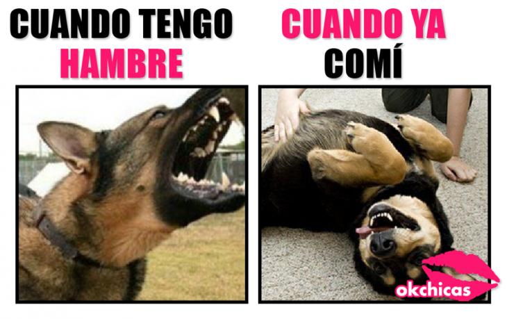 Meme okchicas: cuando tengo hambre vs cuando ya comí